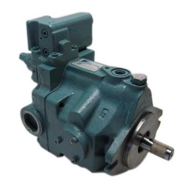 Dansion Republic  P080 series pump P080-06L5C-H5P-00