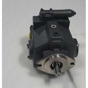 Dansion and  P080 series pump P080-06L1C-H8J-00