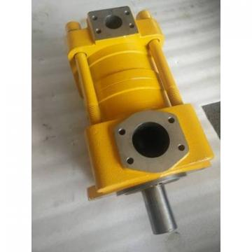 Japanese SUMITOMO QT32 Series Gear Pump QT32-12.5E-A