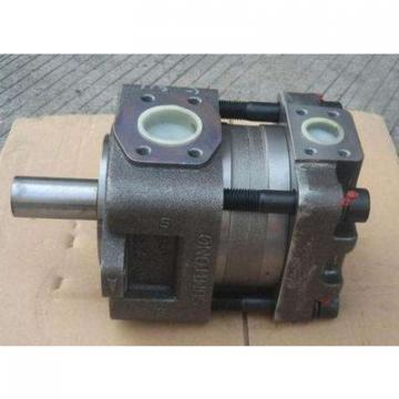 Japanese SUMITOMO QT6252-125-63F-HT QT6252 Series Double Gear Pump