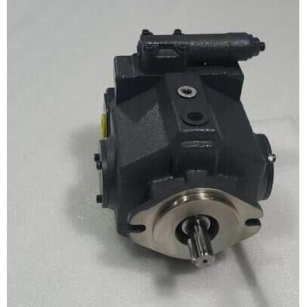 Dansion Spain gold cup piston pump P11P-7R5E-9A2-B00-0B0 #3 image