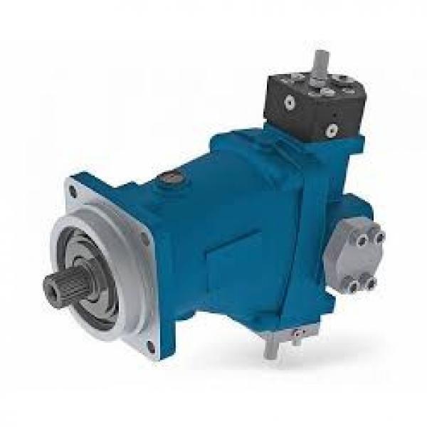Dansion Nigeria P080 series pump P080-07L5C-W20-00 #1 image