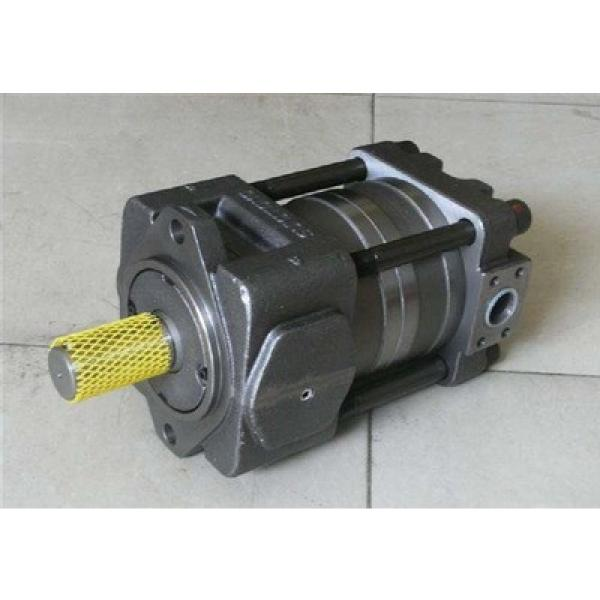 Japanese Japanese SUMITOMO QT31 Series Gear Pump QT31-20F-A #1 image